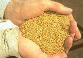 原料 から し CO2からリチウム電池原料を製造する技術がスゴイ。旭化成が海外大手とライセンスを契約 ニュースイッチ by